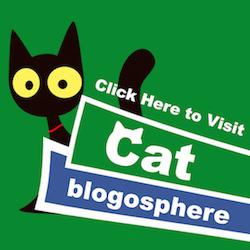 Catblogosphere.com