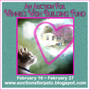 An Auction For Winnie's Wish Building Fund