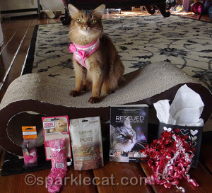 Valentine's Day Party at Sparkle Cat