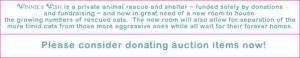 Fundraiser for Winnie's Wish