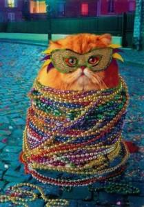 Mardi Gras at the Tabby Cat Club