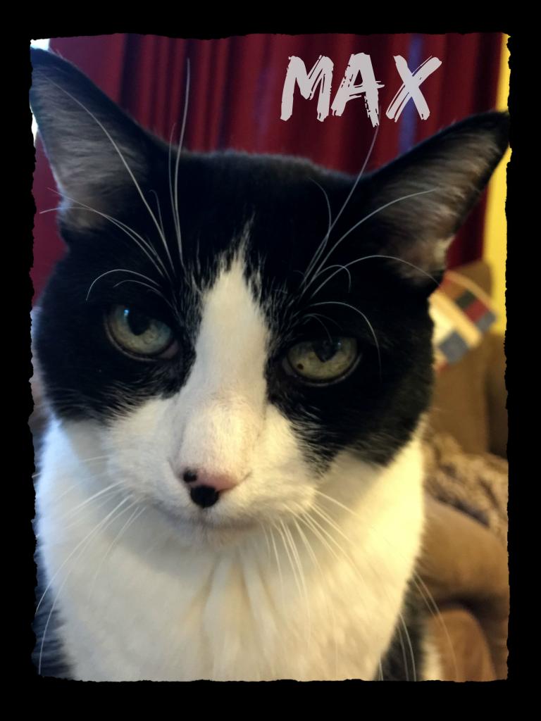 MAX-14