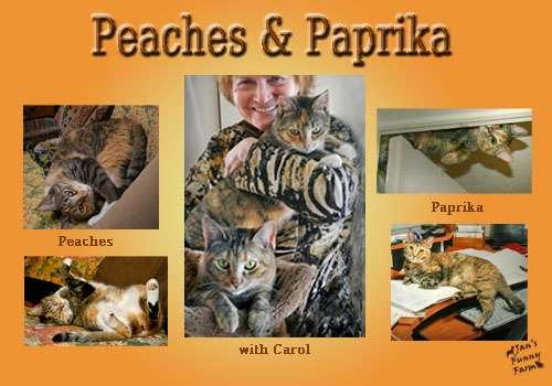 Peaches Paprika_resized