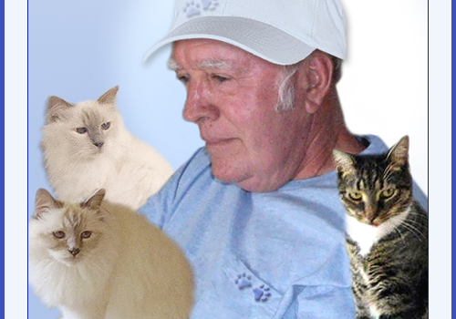 Purrs and Prayers Request for Cat Daddy Bill