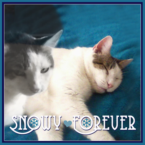 Snowy, Forever (1)