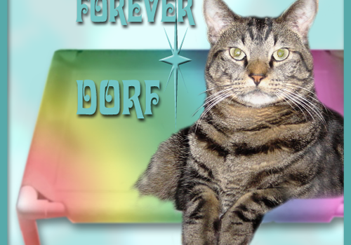 Rest In Peace, Dorf