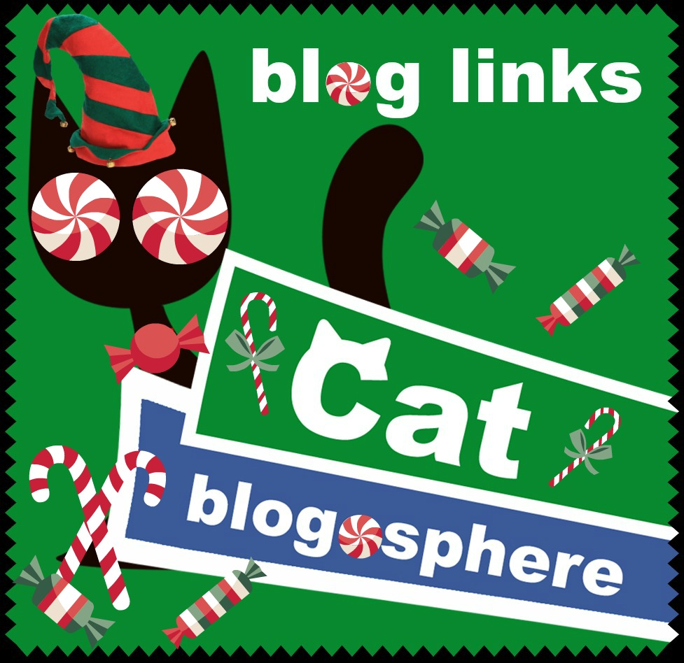 Friday 12/22 Blog Links