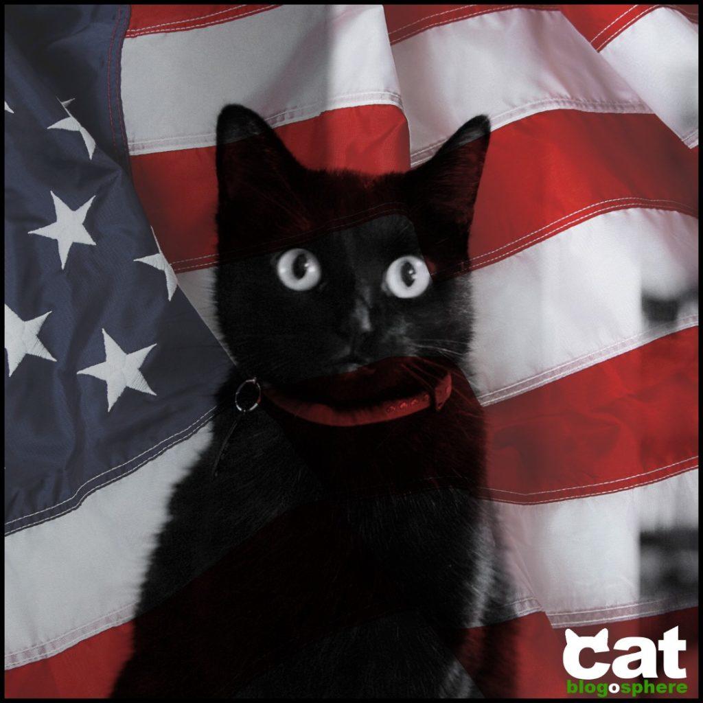 isis cb patriotic