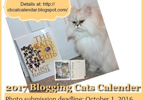 It's Time for 2017 Calendar Submissions