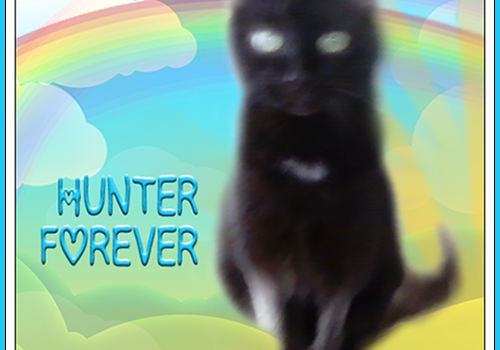 Rest In Peace, Hunter