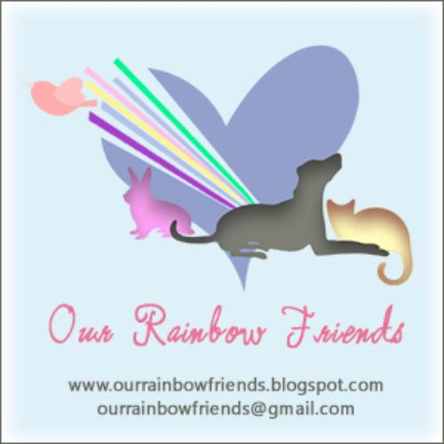 Our Rainbow Friends – February 2018