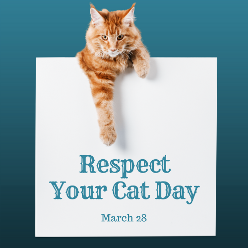 Respect Your Cat Day Blog Links