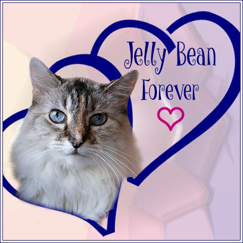 Jelly Bean Forever