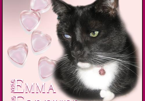 Emma Forever