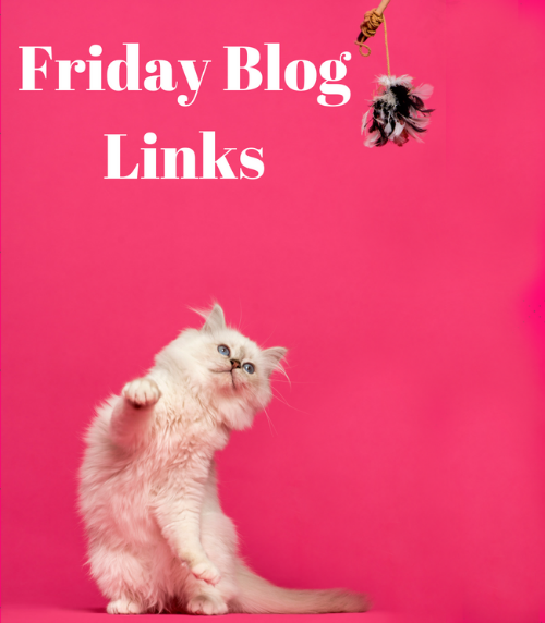 Friday 5/25 Blog Links