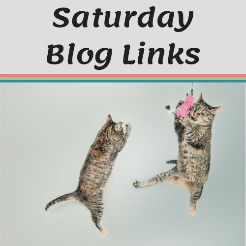 Saturday 5/26 Blog Links