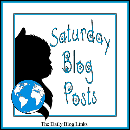 Saturday 8/10 Blog Links