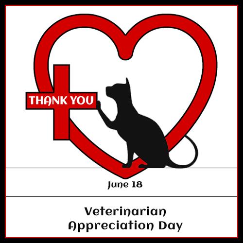 Veterinarian Appreciation Day Monday 6/18 Blog Links