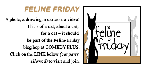 Feline Friday Blog Hop