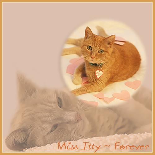 Miss Itty