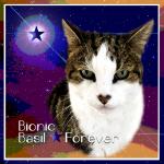 Bionic Basil