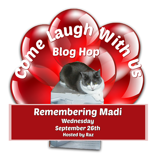 A Special Blog Hop Tribute To Madi