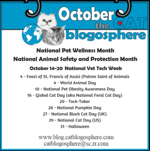 Monday 10/1 Blog Links