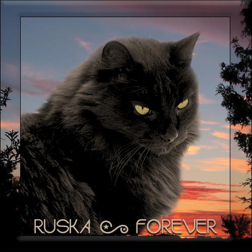 Rest In Peace Ruska