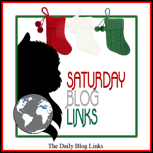 Saturday 12/7 Blog Links