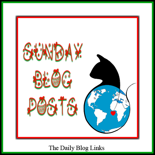 Sunday 11/25 Blog Links