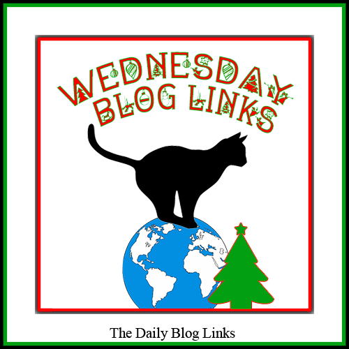 Wednesday 12/5 Blog Links