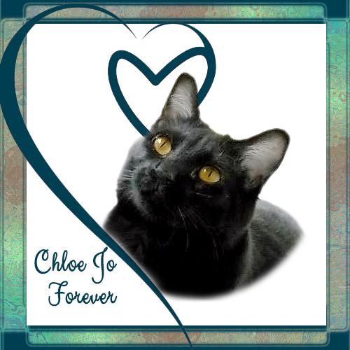 Chloe Jo Forever