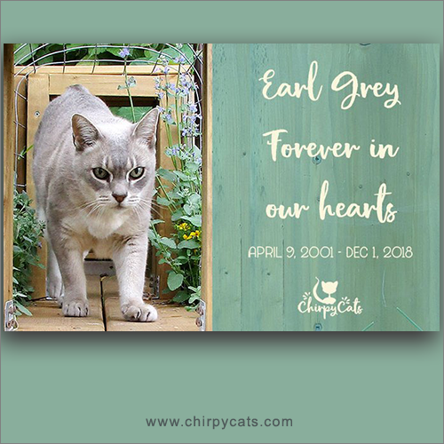 Rest In Peace Earl Grey