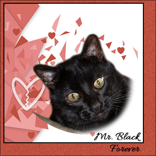 Mr. Black – Over The Rainbow Bridge