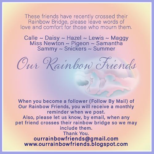 Our Rainbow Friends – April