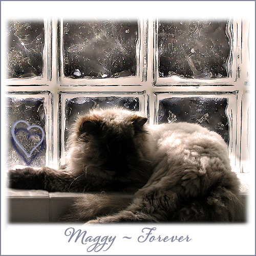 Maggy Forever