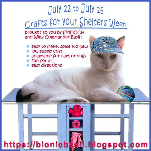Monday 7/22 Blog Links And Crafts For Your Shelters Week