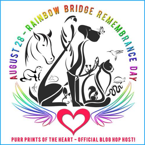 Rainbow Bridge Remembrance Day 8/28 Blog Links