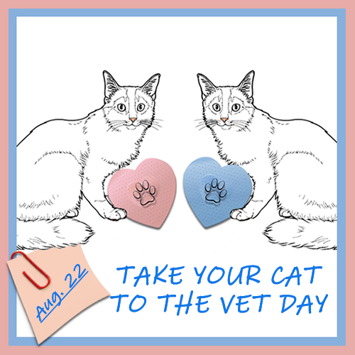 Take Your Cat To The Vet Day 2019 & Blog Links