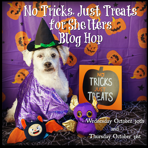 Fundraising Time:  No Tricks, Just Treats For Shelters Blog Hop And Commentathon – Day 2