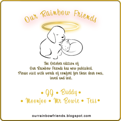 Our Rainbow Friends (October)