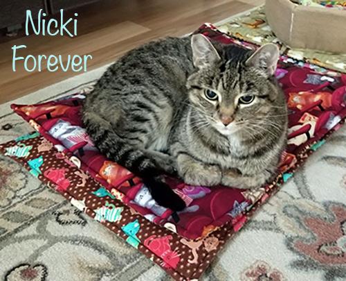 Nicki Forever