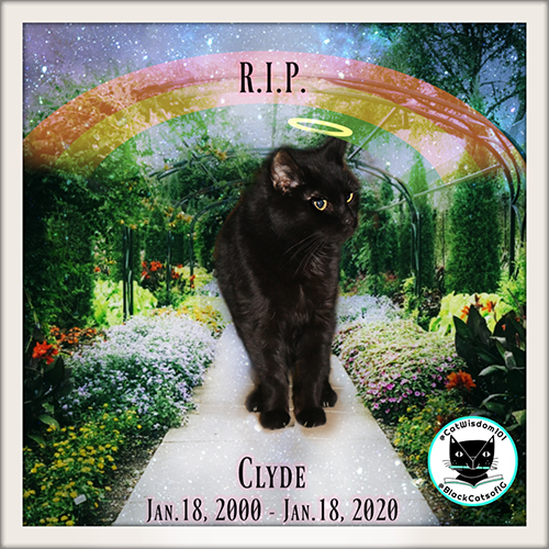 Rest In Peace Dear Clyde