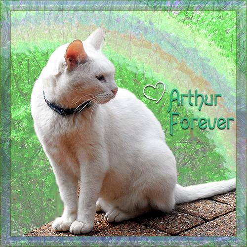 Arthur Forever