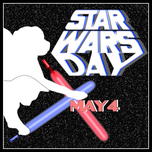May the 4th Be With You Graphic