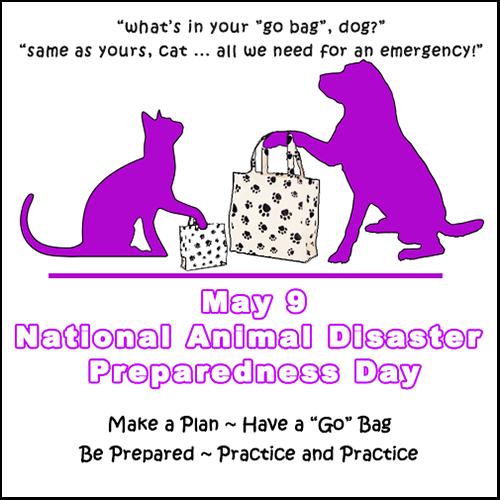 Animal Disaster Preparedness Day 5/9 Blog Links