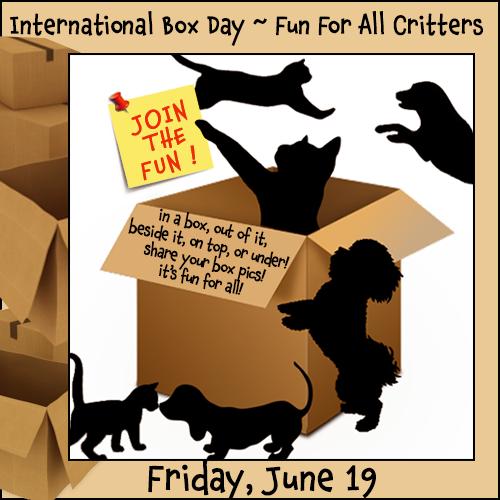 International Box Day 6/19 Blog Links
