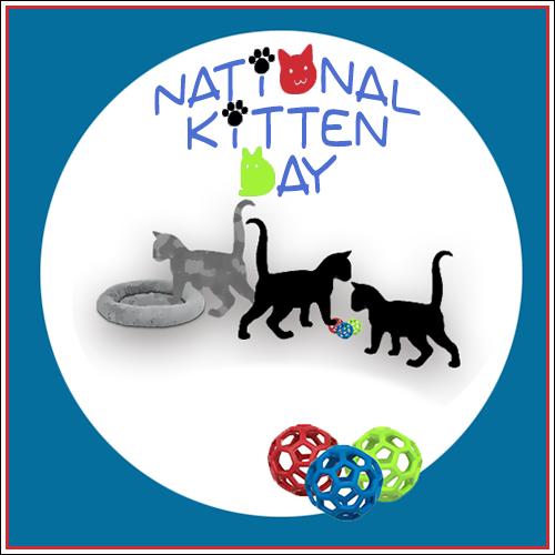 National Kitten Day 7/10 Blog Links