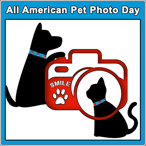 All American Pet Photo Day 7/11 Blog Links