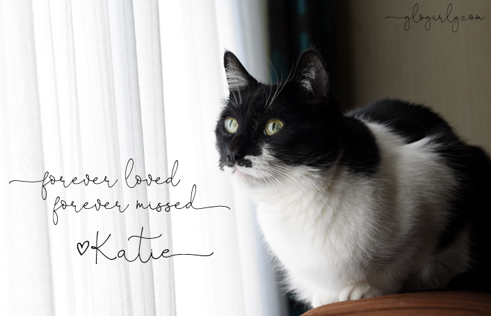 Katie Forever